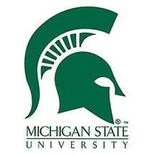 9.Michigan State University